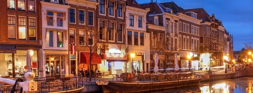 Leiden Summer School in Languages and Linguistics 2021